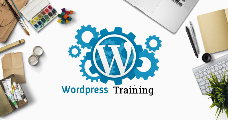 Where to Find the Best WordPress Training in Singapore